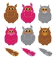 owls pink brown gray plumage vector image vector image