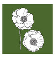 Black and white poppy flower blossom vector image