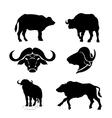 Buffalo set vector image vector image