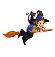 old witch with hat flying on a broom with a black vector image