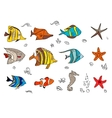 Set with coral fishes vector image vector image