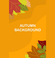 autumn background template design - banner image vector image