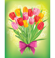 Bouquet of fresh spring tulips different colors vector image
