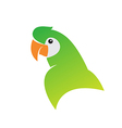 Parrot designs vector image vector image