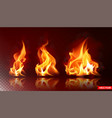 realistic burning fire flame bright element vector image