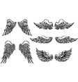 Wings vector | Price: 1 Credit (USD $1)
