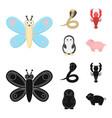 an unrealistic cartoonblack animal icons in set vector image vector image
