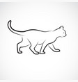 cat walking on a white background pet animals cat vector image