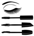 eye mascara vector image