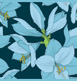hippeastrum amaryllis seamless pattern blue navy vector image vector image