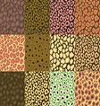 leopard texture vector image