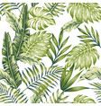 pastel green jungle white background vector image vector image