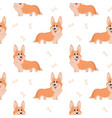 seamless corgi pattern cartoon home pet set of vector image