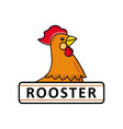 chicken rooster logo template place for text vector image