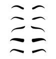 eyebrow model set vector image