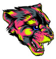 face of a drawn panther vector image vector image