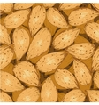 shelled almonds vector image
