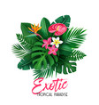 tropical banner with leaves and flower vector image vector image
