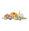 watercolor festive autumn decor from vector image