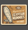 ancient egypt mummies and deities vector image