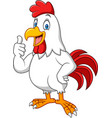 cartoon happy rooster giving thumbs up vector image vector image