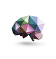colored brain polygonal design vector image