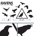 Hand Drawn Ravens Set vector image