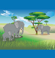 landscape with elephant vector image vector image