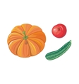 Set of Autumn Vegetables Flat vector image vector image