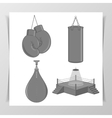 Set of Boxing Elements vector image