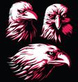silhouette eagle falcon head logo isolated vector image vector image