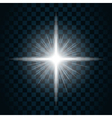 sparkle light star 10 vector image vector image