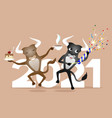 two funny bulls in a jump vector image