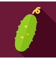 Cucumber flat icon with long shadow vector image vector image