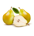 Fresh pears isolated on white vector image vector image
