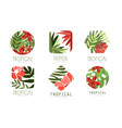 geometric tropical logo design collection with vector image vector image