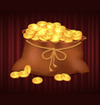 gold and wealth in sack bag with money coins vector image vector image