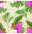 seamless texture orchids phalaenopsis vector image vector image