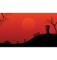 Silhouette of warlock and pumpkins Halloween vector image vector image
