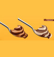 spoon with chocolate and caramel swirl duo spread vector image vector image
