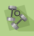 two dumbbells and expander vector image