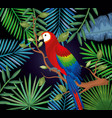 tropical and exotic garden with parrot vector image