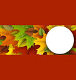 autumn banner with colorful leaves vector image