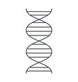 dna molecule isolated icon vector image vector image