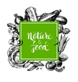 Eco natural food menu background Sketch hand vector image vector image