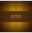 Lace pattern background with indian ornament vector image