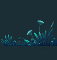 meadow plants forest grass vegetation flowers vector image vector image