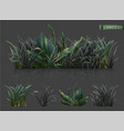 spring dark green grass 3d realistic icon set vector image vector image