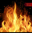 abstract fire flames background vector image