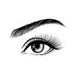 beautiful female eye drawn hand vector image